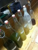 Chef Fabrizio's home made liqueurs for after-dinner sampling.